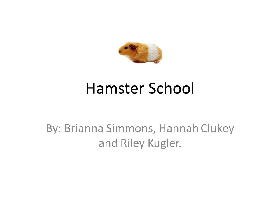 By: Brianna Simmons, Hannah Clukey and Riley Kugler.