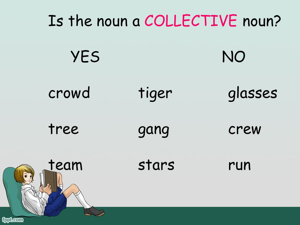 Is the noun a COLLECTIVE noun YES NO crowd tiger glasses