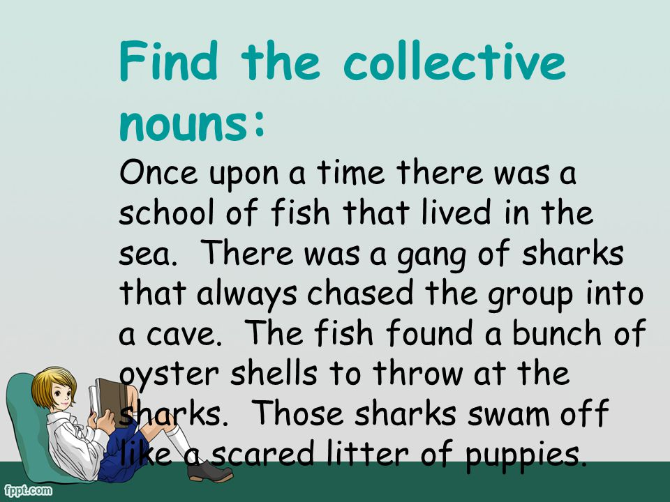 Find the collective nouns: