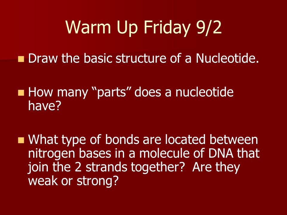 Warm Up Friday 9/2 Draw the basic structure of a Nucleotide.