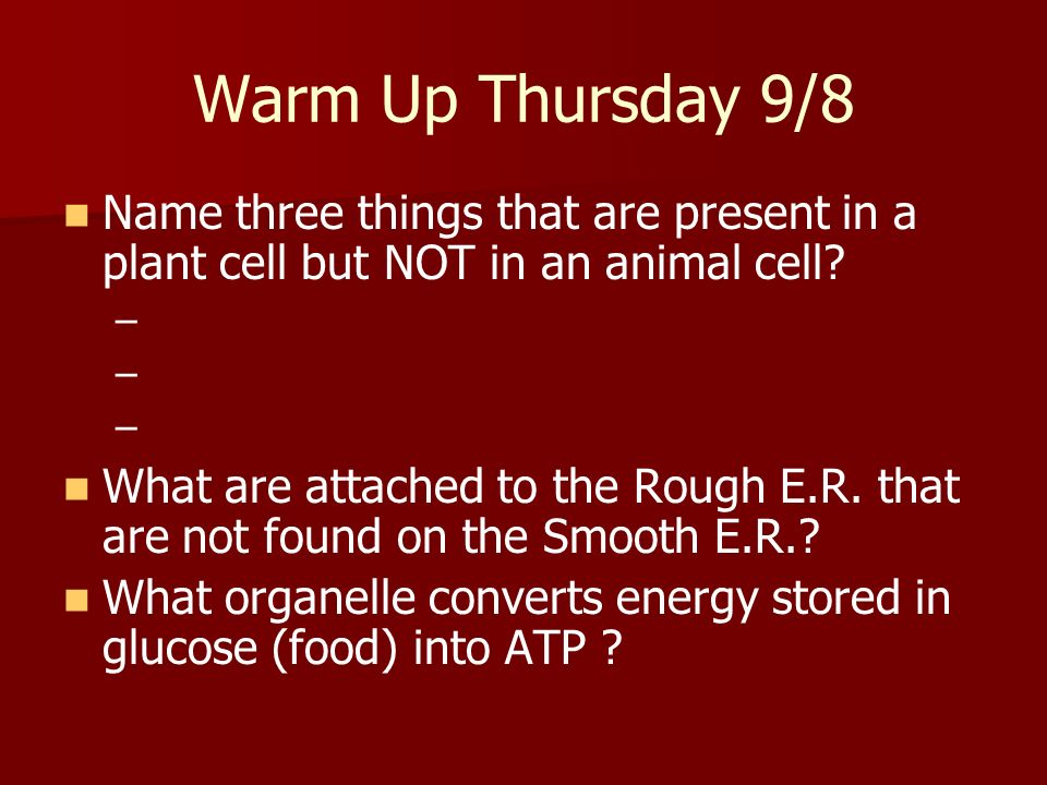 Warm Up Thursday 9/8 Name three things that are present in a plant cell but NOT in an animal cell