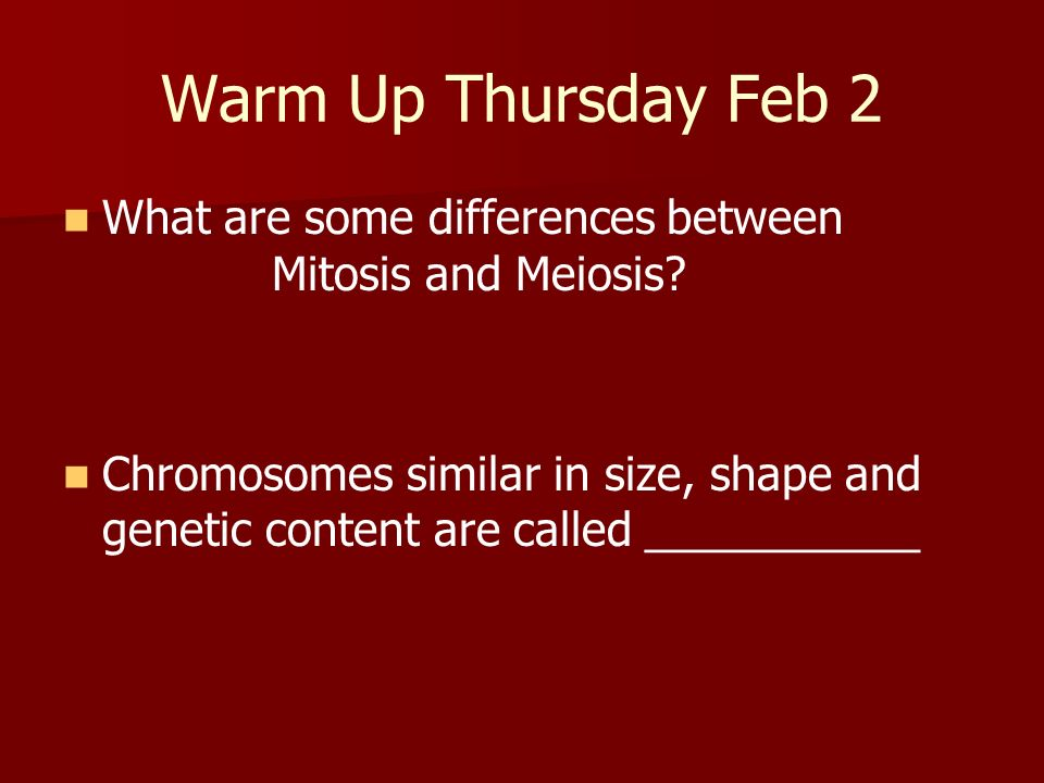 Warm Up Thursday Feb 2 What are some differences between Mitosis and Meiosis