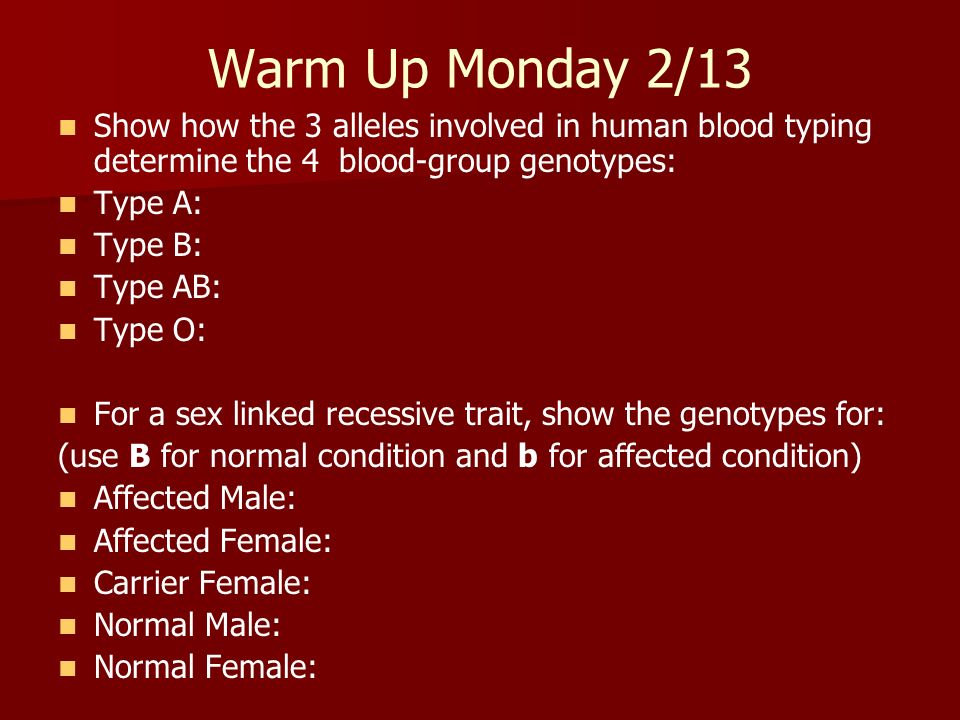 Warm Up Monday 2/13 Show how the 3 alleles involved in human blood typing determine the 4 blood-group genotypes: