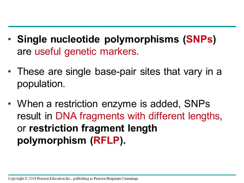 Single nucleotide polymorphisms (SNPs) are useful genetic markers.
