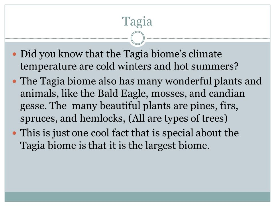Tagia Did you know that the Tagia biome's climate temperature are cold winters and hot summers