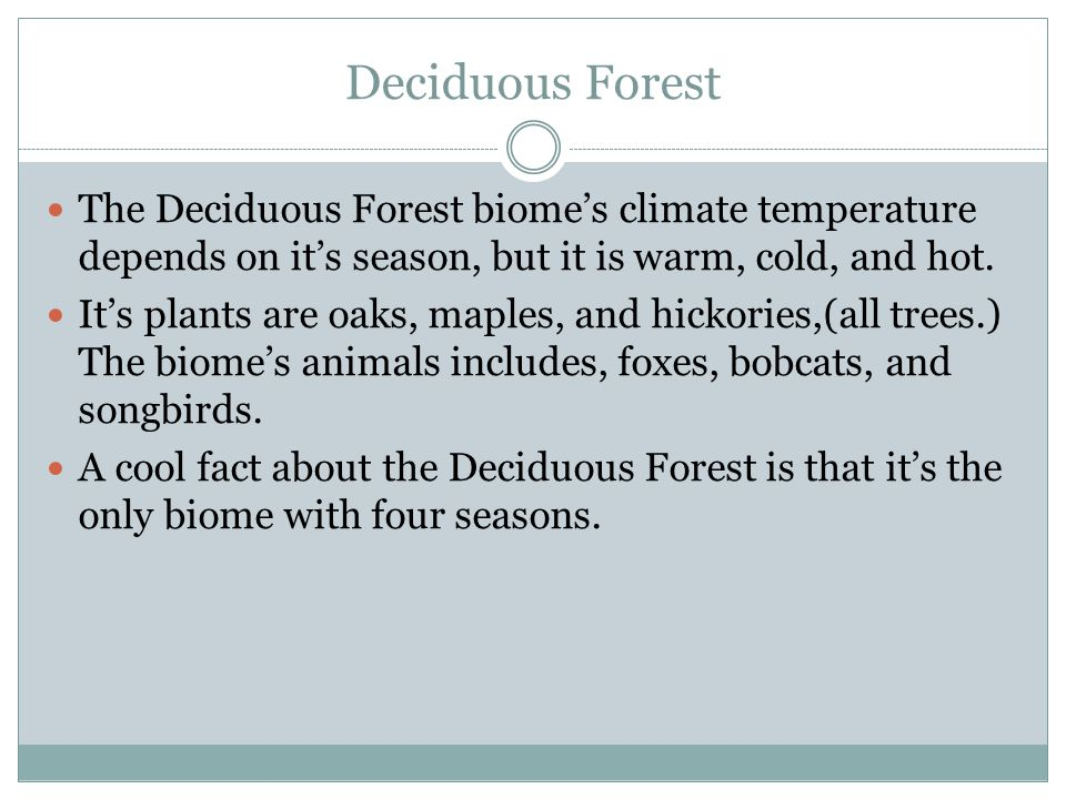 Deciduous Forest The Deciduous Forest biome's climate temperature depends on it's season, but it is warm, cold, and hot.