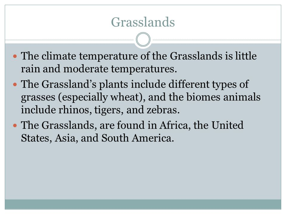 Grasslands The climate temperature of the Grasslands is little rain and moderate temperatures.