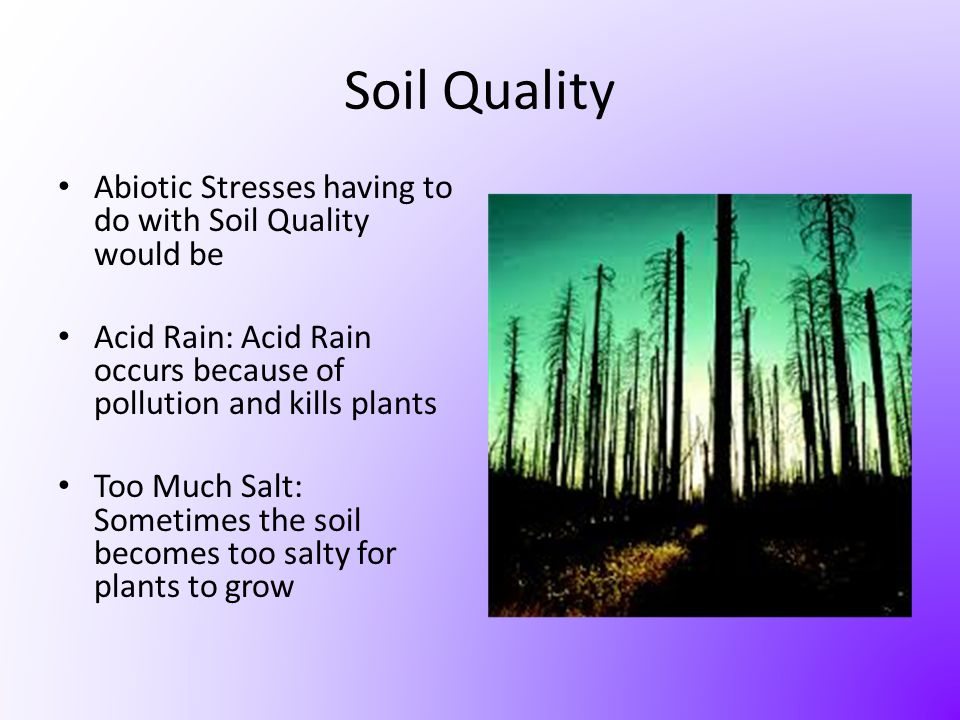 Soil Quality Abiotic Stresses having to do with Soil Quality would be