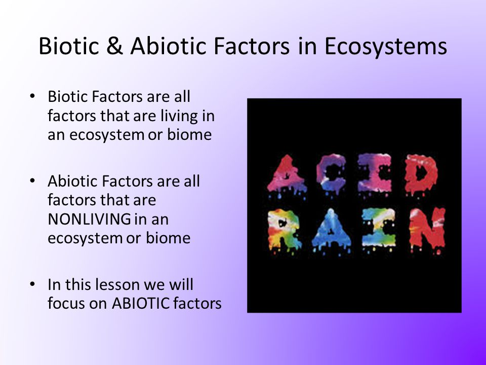 Biotic & Abiotic Factors in Ecosystems