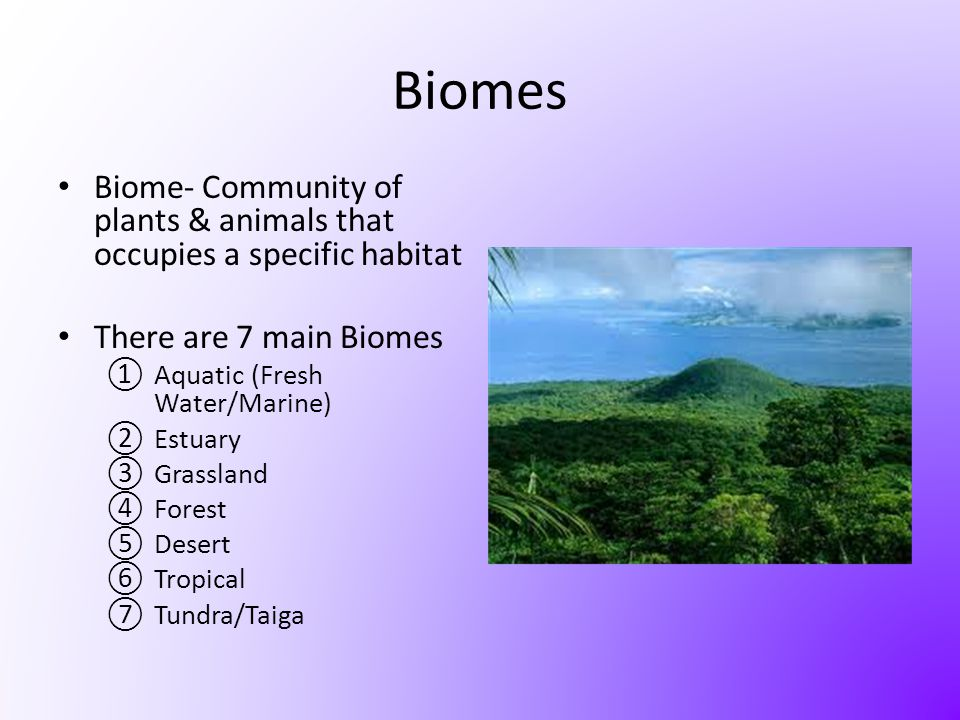 Biomes Biome- Community of plants & animals that occupies a specific habitat. There are 7 main Biomes.