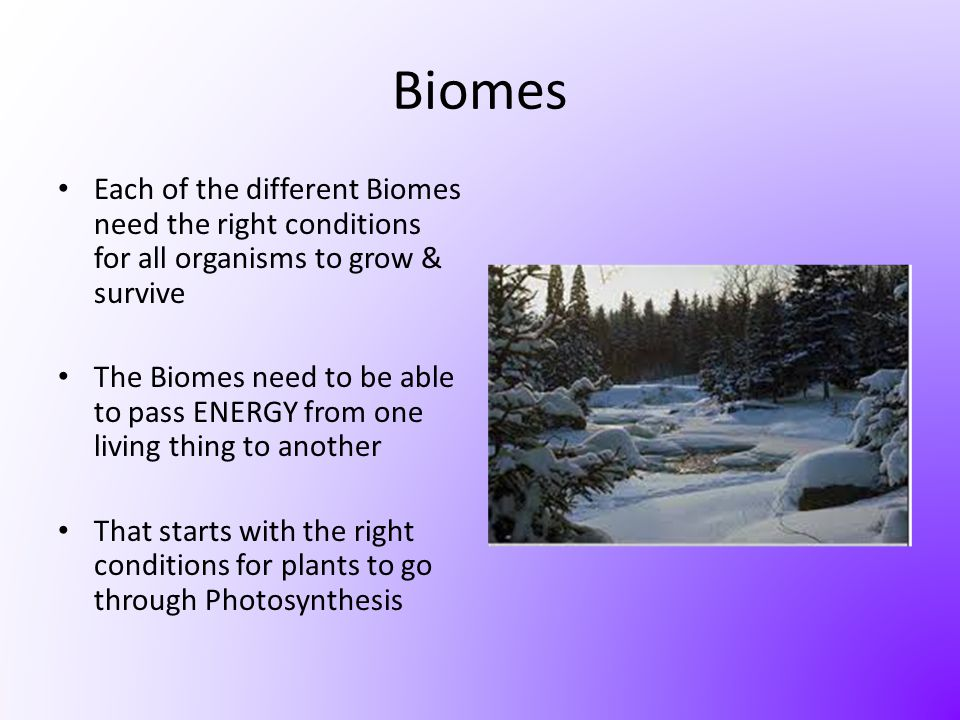 Biomes Each of the different Biomes need the right conditions for all organisms to grow & survive.