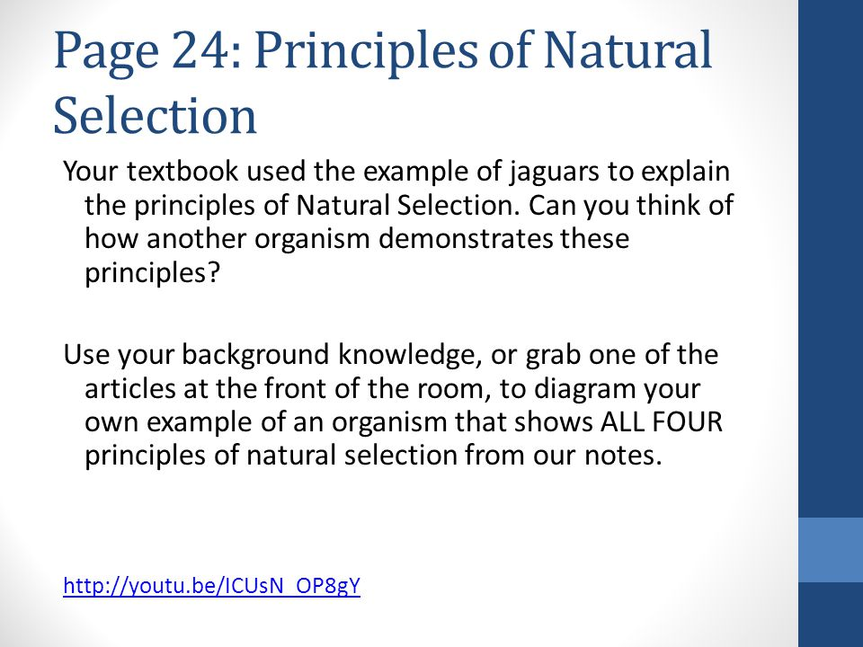 Page 24: Principles of Natural Selection