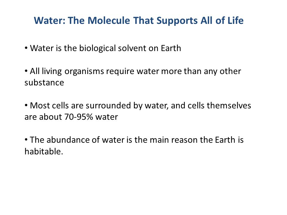 Water: The Molecule That Supports All of Life