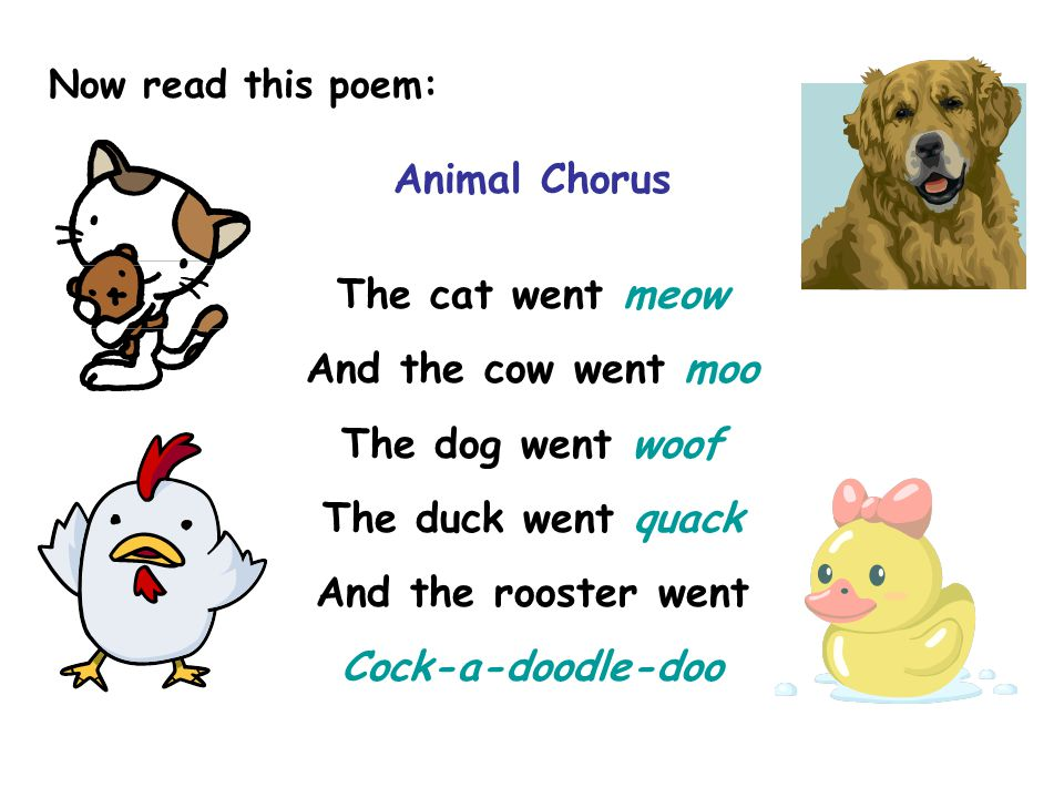 Animal Chorus The cat went meow And the cow went moo The dog went woof