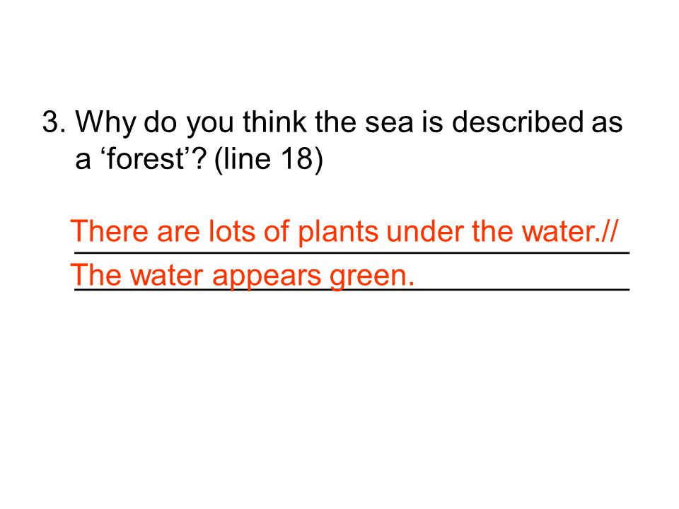 3. Why do you think the sea is described as a 'forest' (line 18)