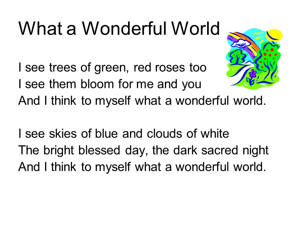 what a wonderful night essay