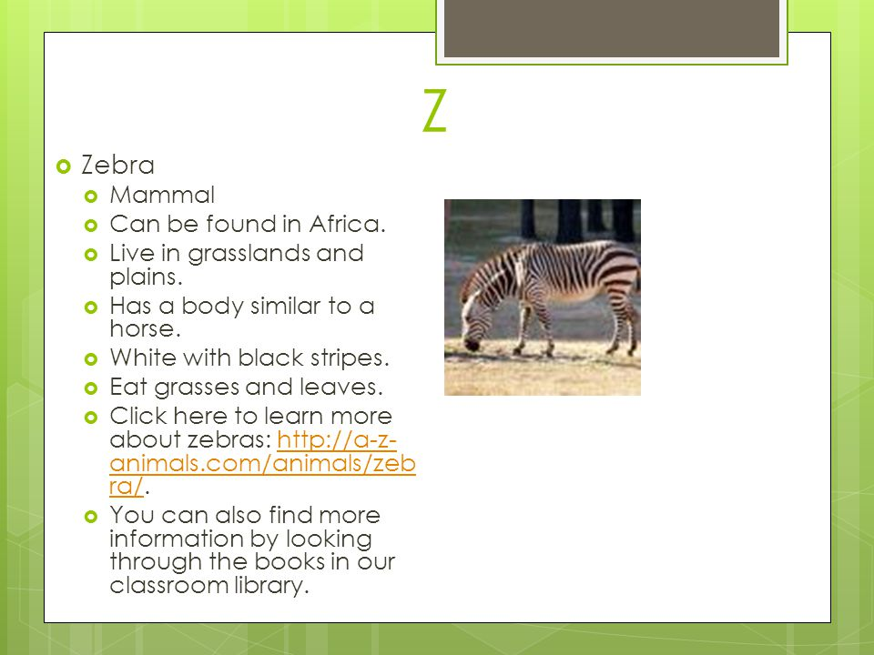 Z Zebra Mammal Can be found in Africa. Live in grasslands and plains.