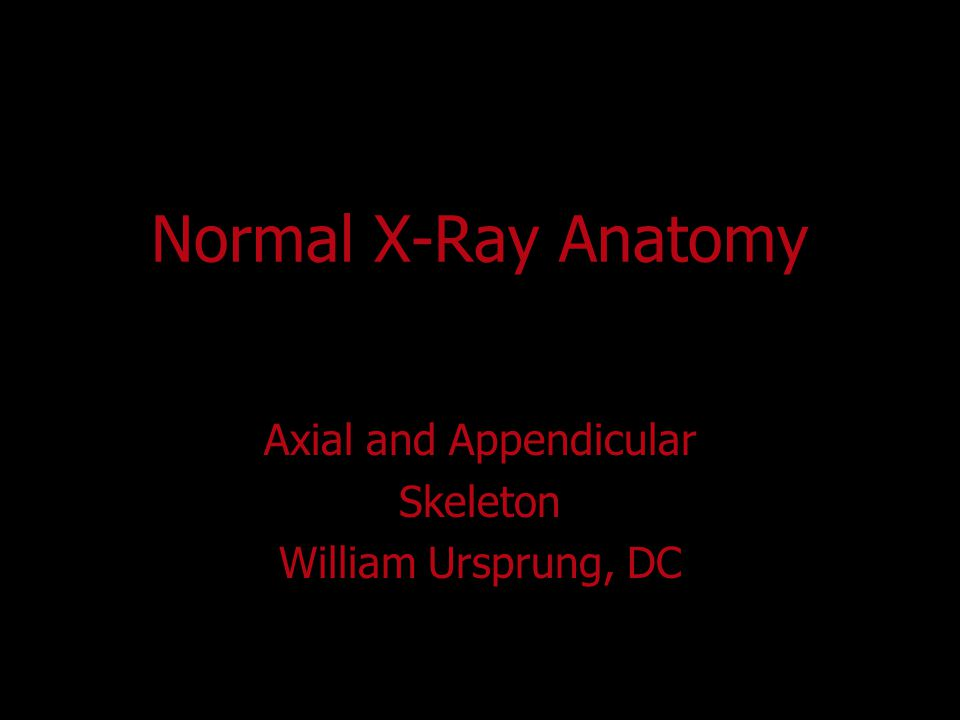 Axial and Appendicular Skeleton William Ursprung, DC