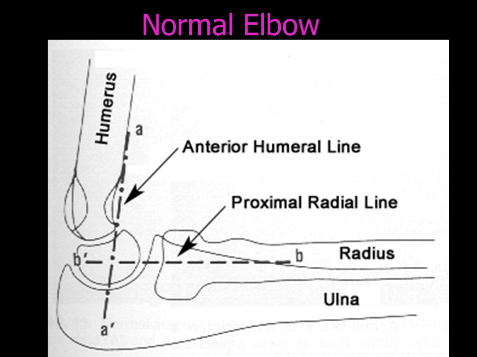 Normal Elbow
