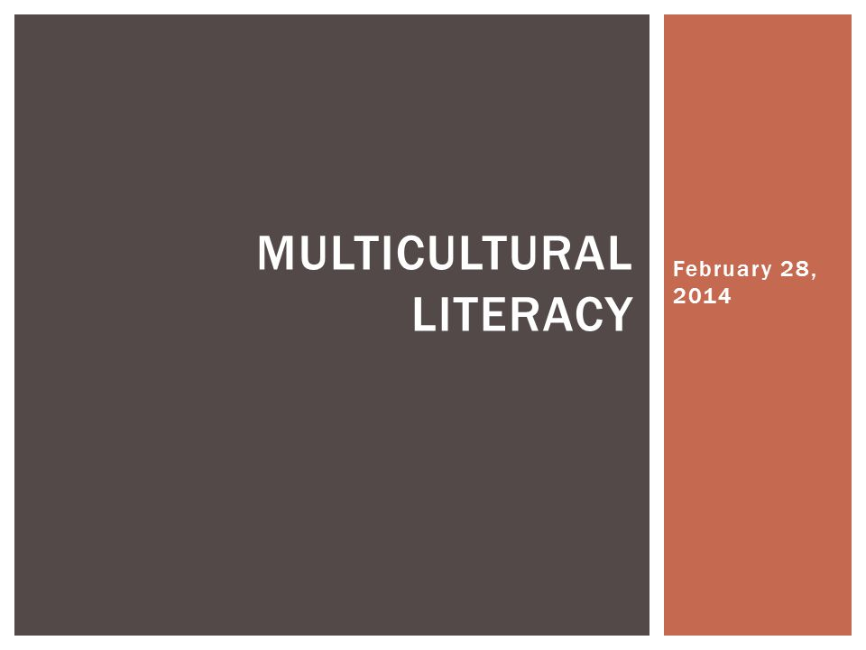 Multicultural LIteracy