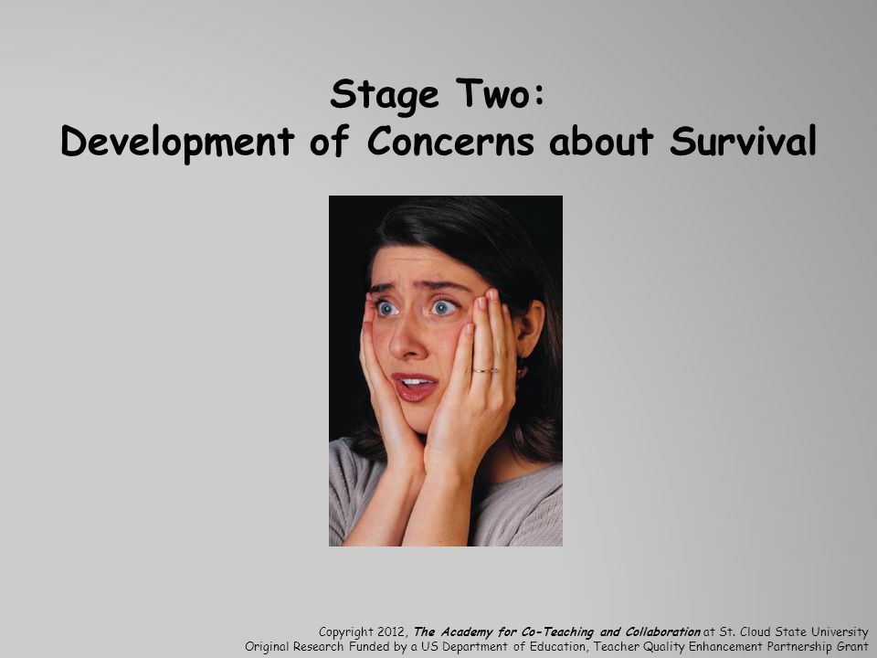 Stage Two: Development of Concerns about Survival