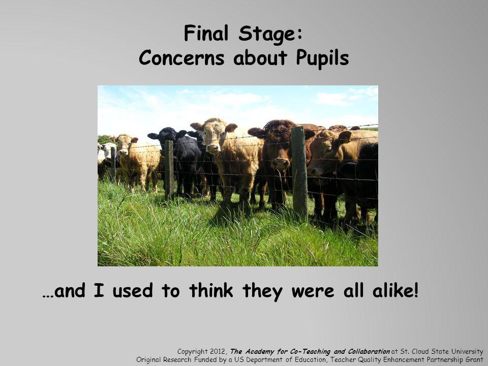 Final Stage: Concerns about Pupils