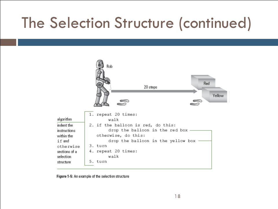 The Selection Structure (continued)