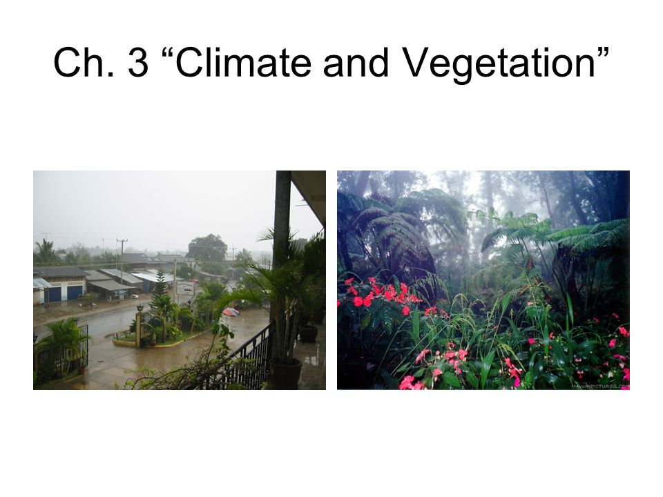 Ch. 3 Climate and Vegetation