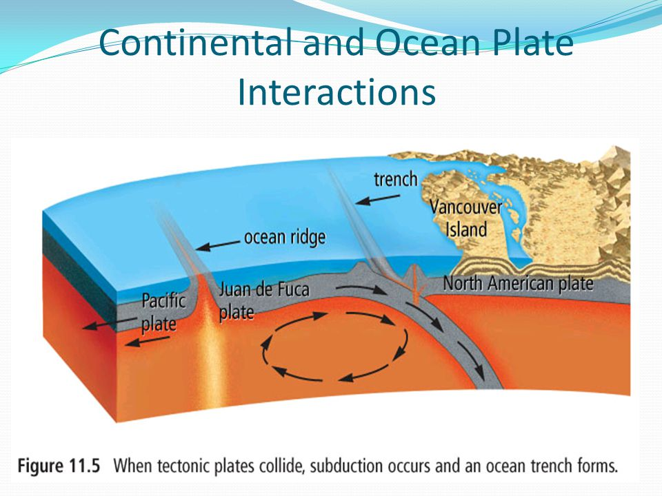 Continental and Ocean Plate Interactions