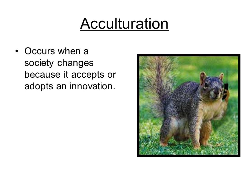 Acculturation Occurs when a society changes because it accepts or adopts an innovation.