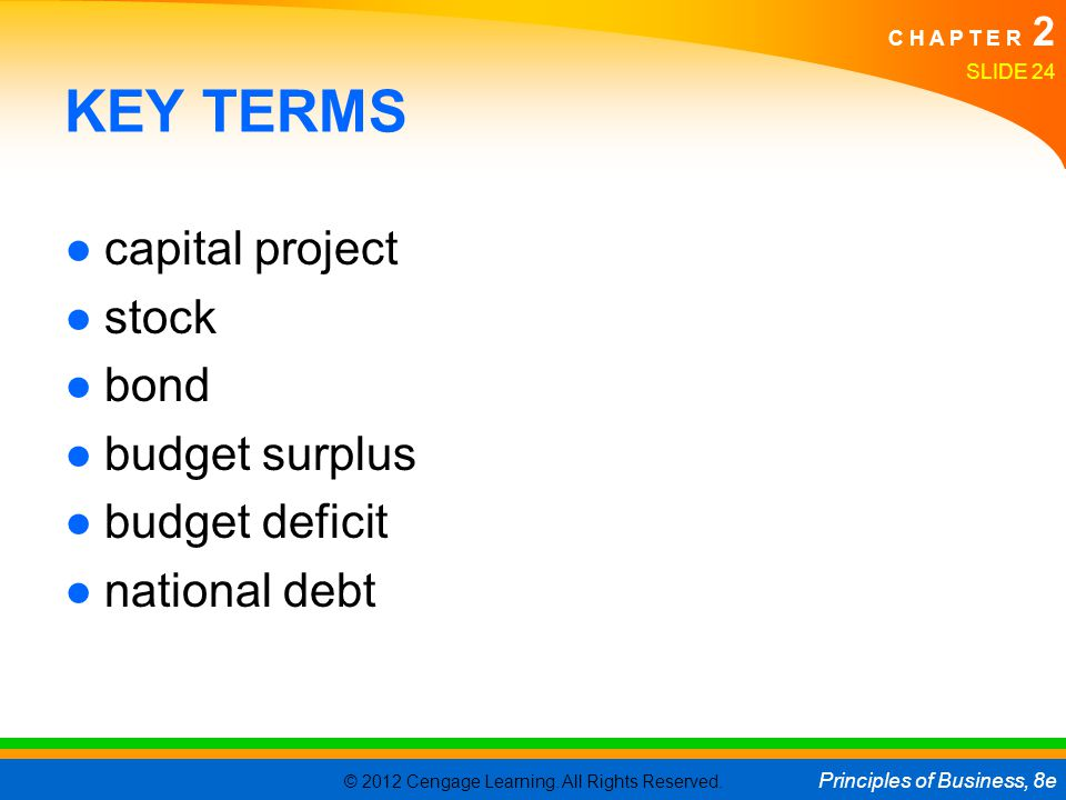 KEY TERMS capital project stock bond budget surplus budget deficit