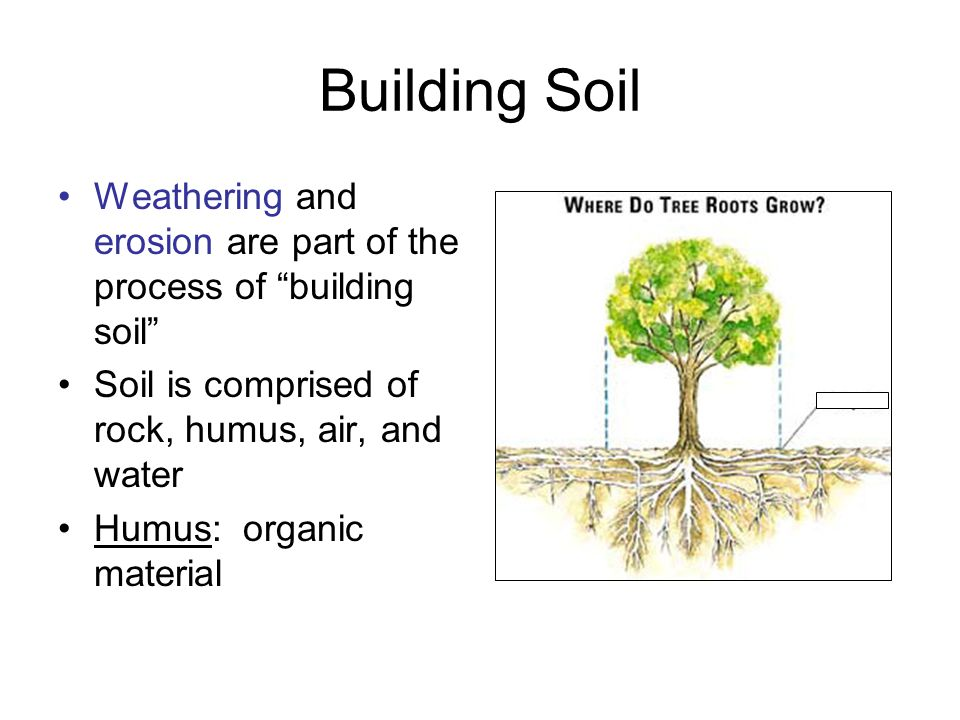 Building Soil Weathering and erosion are part of the process of building soil Soil is comprised of rock, humus, air, and water.
