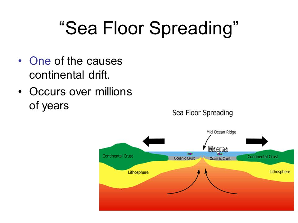 Sea Floor Spreading One of the causes continental drift.