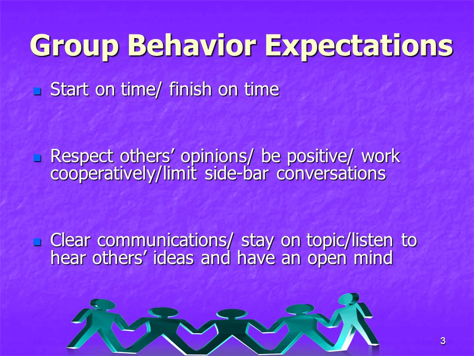 Group Behavior Expectations