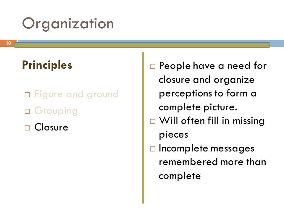 Organization Principles
