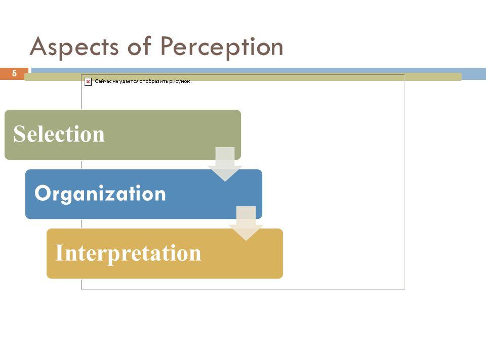 Aspects of Perception Selection Organization Interpretation