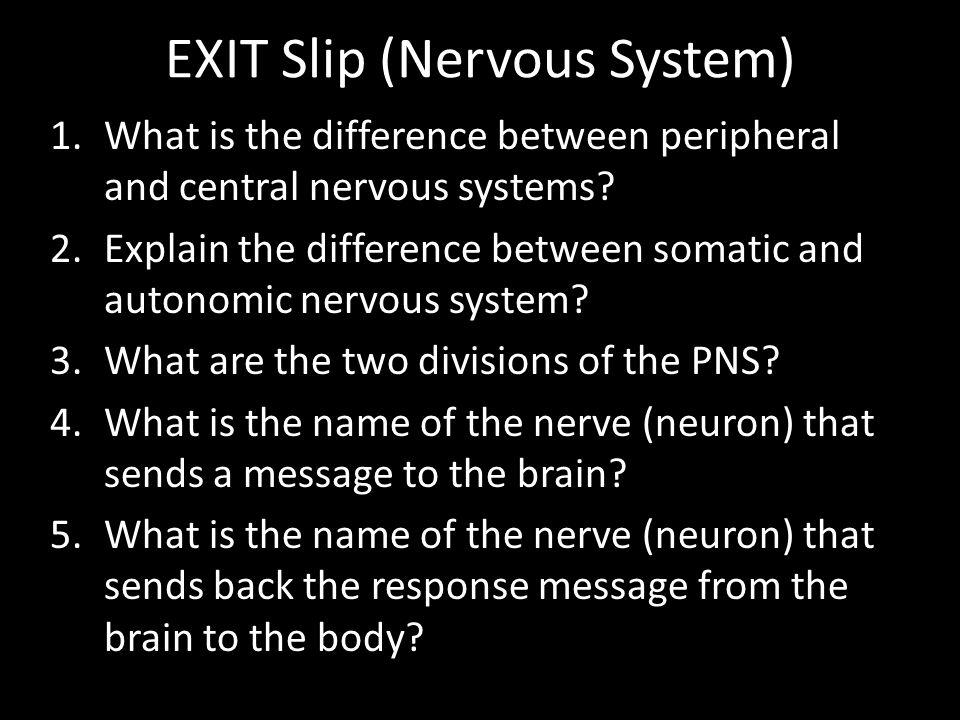 EXIT Slip (Nervous System)