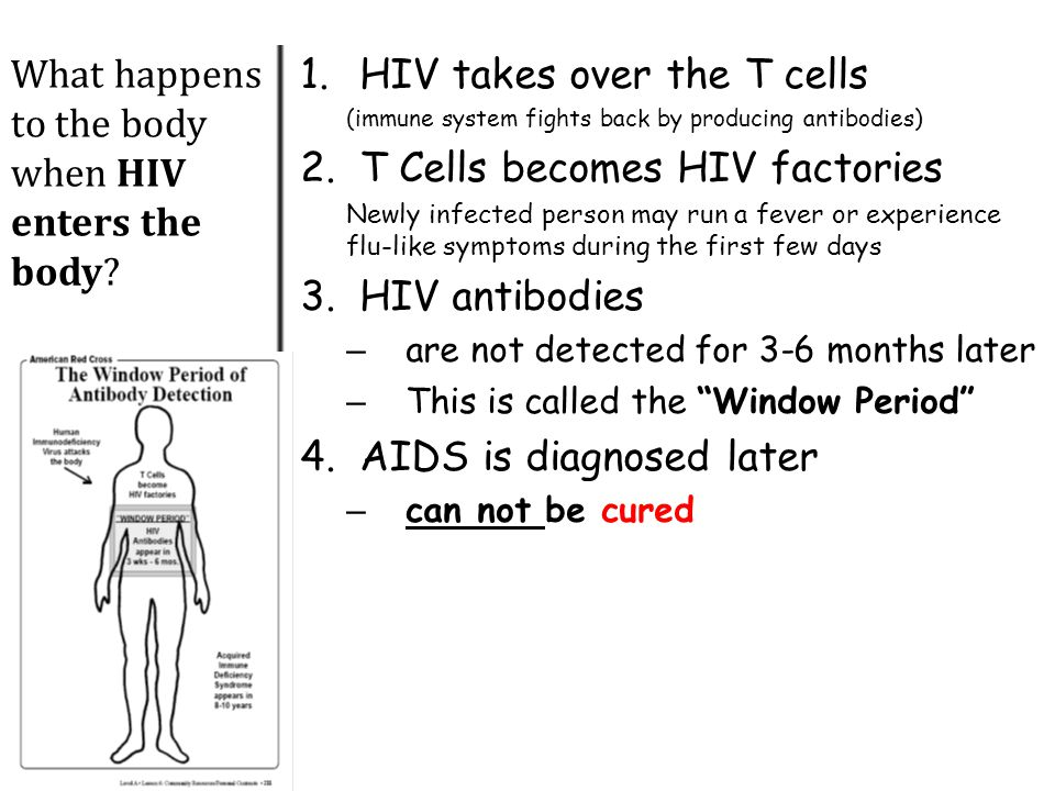 What happens to the body when HIV enters the body