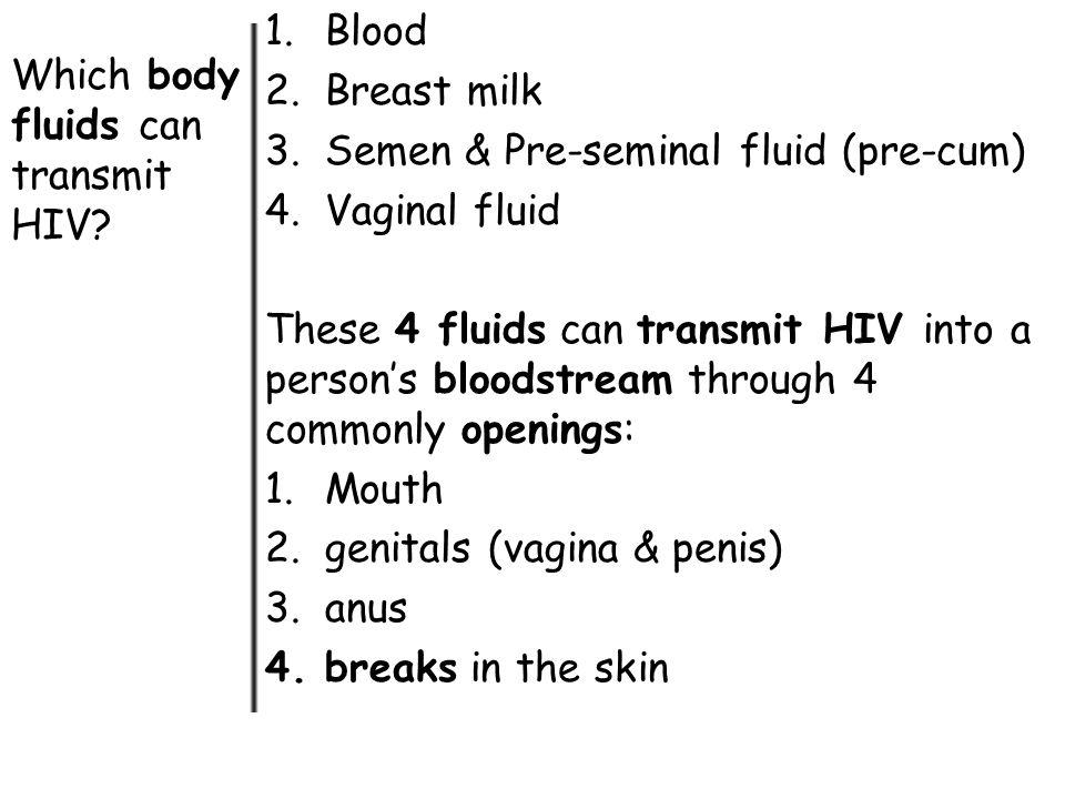 Blood Breast milk. Semen & Pre-seminal fluid (pre-cum) Vaginal fluid.