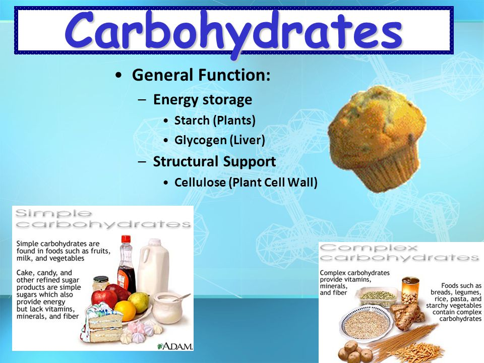 Carbohydrates General Function: Energy storage Structural Support