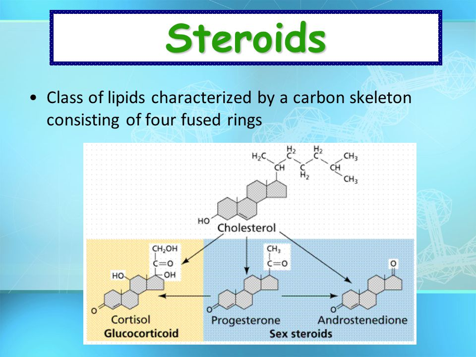 Steroids Class of lipids characterized by a carbon skeleton consisting of four fused rings