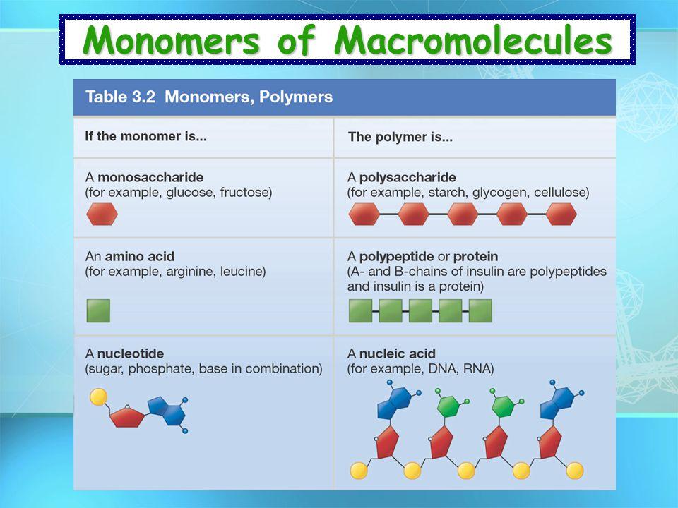 Monomers of Macromolecules