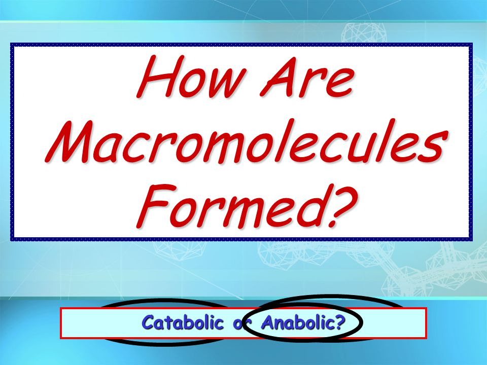 How Are Macromolecules Formed