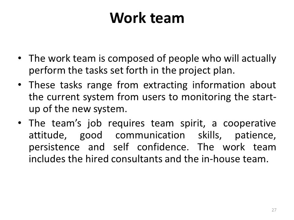 Work team The work team is composed of people who will actually perform the tasks set forth in the project plan.