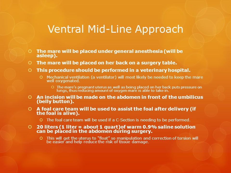 Ventral Mid-Line Approach
