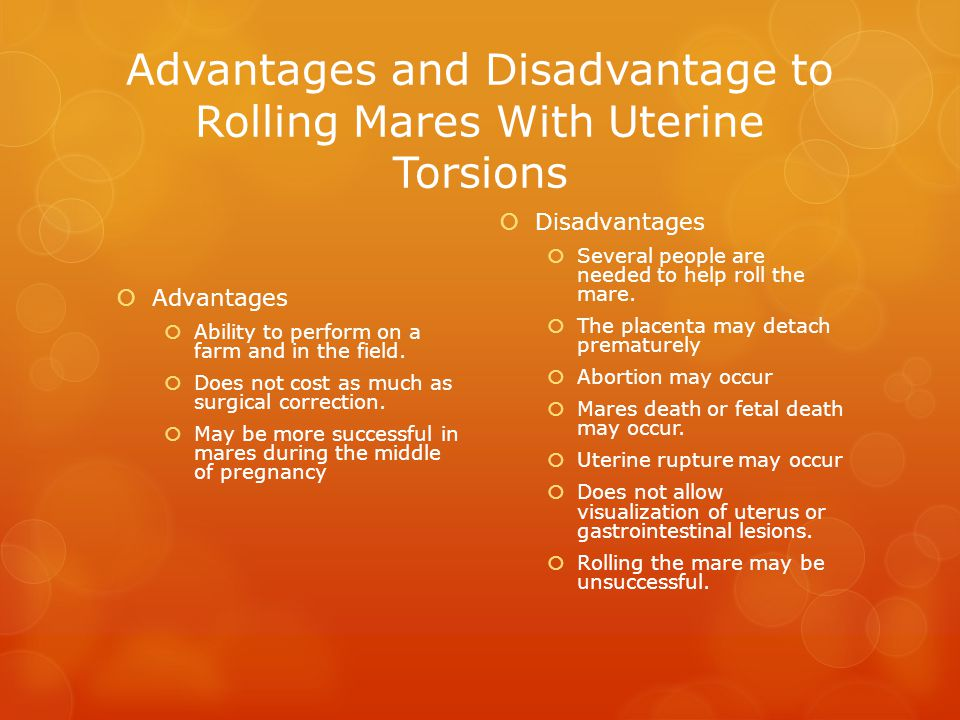 Advantages and Disadvantage to Rolling Mares With Uterine Torsions