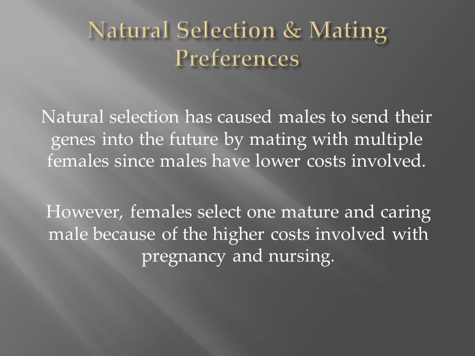 Natural Selection & Mating Preferences