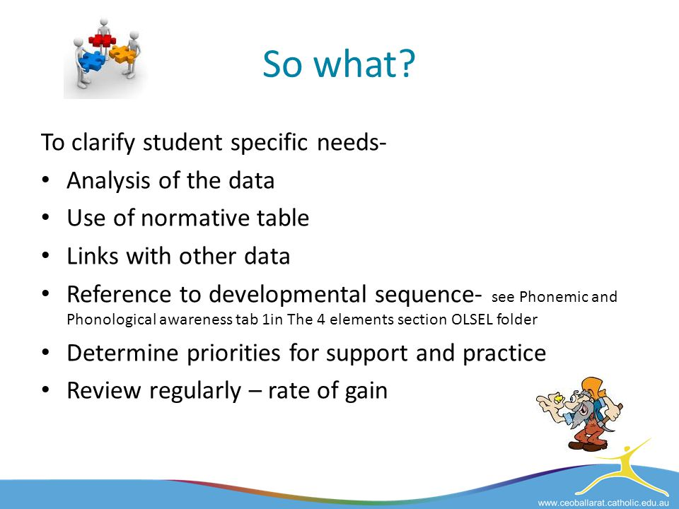So what To clarify student specific needs- Analysis of the data