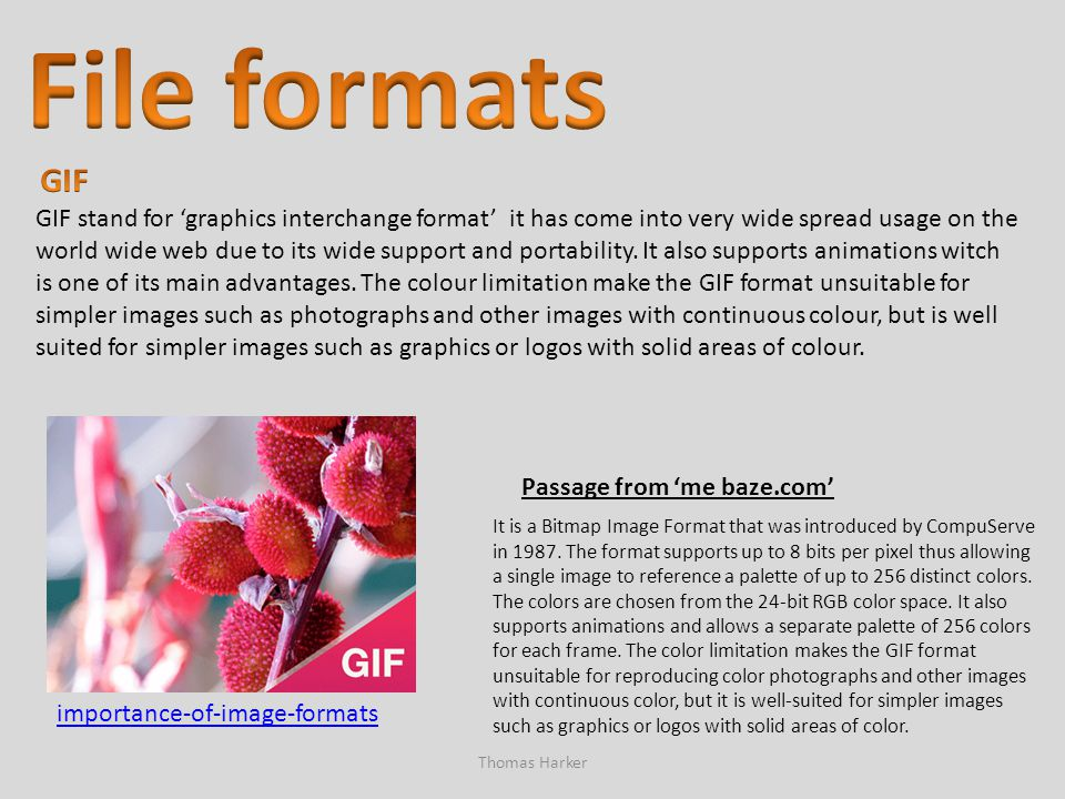 File formats GIF.