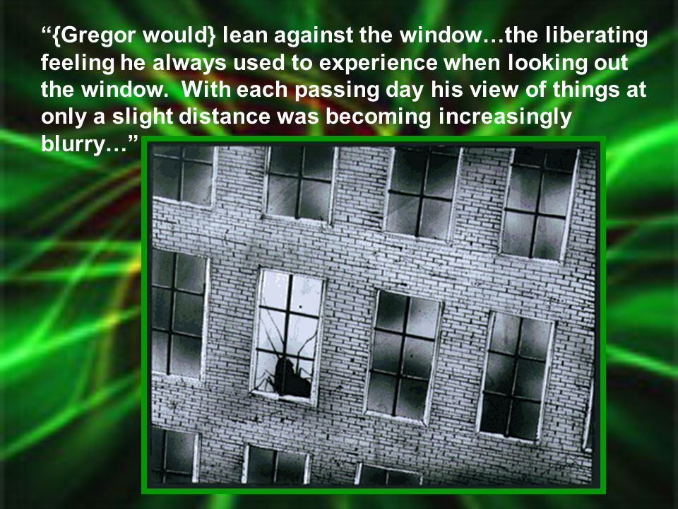 {Gregor would} lean against the window…the liberating feeling he always used to experience when looking out the window.